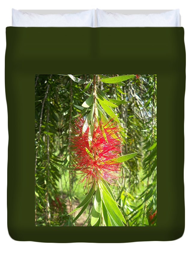 Florida Duvet Cover featuring the photograph Bittersweet Bloom I by Chris Andruskiewicz