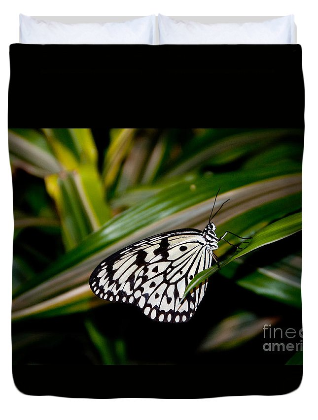 Butterfly Duvet Cover featuring the photograph Black And White Beauty by Anna Serebryanik