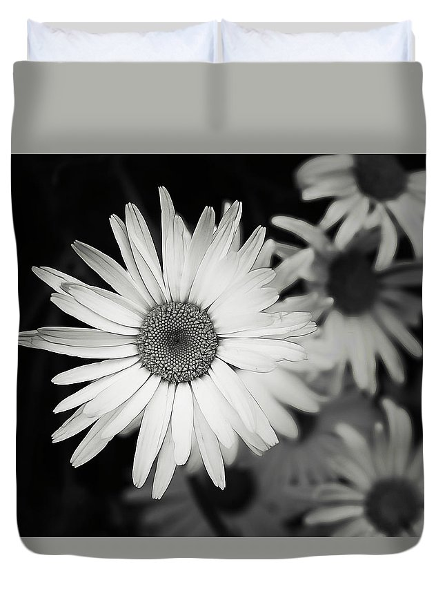 Flower Duvet Cover featuring the photograph Black And White Daisy 1 by Alisha Jurgens