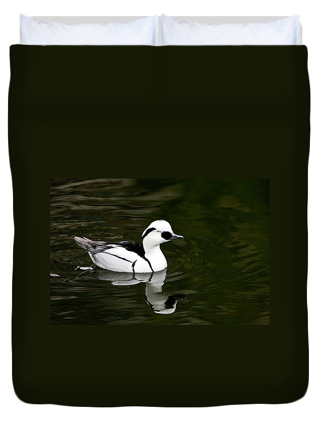 Duck Duvet Cover featuring the photograph Black And White Duck by Douglas Barnett