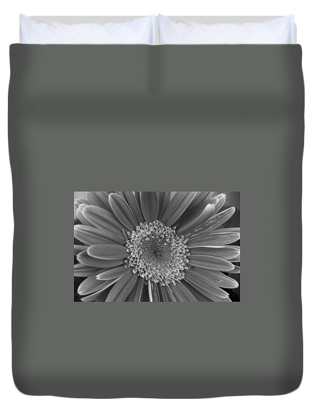 Flower Duvet Cover featuring the photograph Black And White Gerber Daisy 4 by Amy Fose
