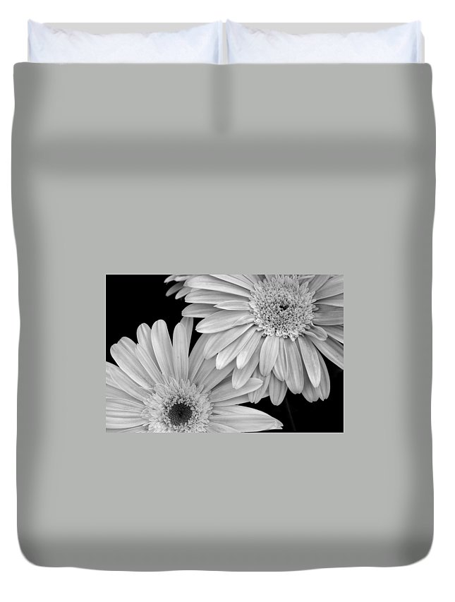Flower Duvet Cover featuring the photograph Black And White Gerbera Daisies 1 by Amy Fose