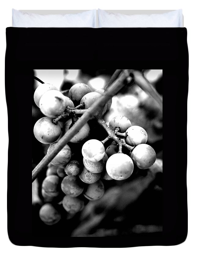 Grapes Duvet Cover featuring the photograph Black And White Grapes by Sally Bauer