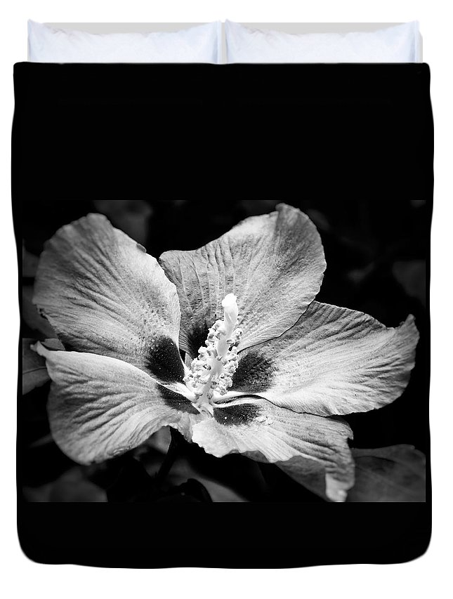 Black And White Duvet Cover featuring the photograph Black And White Hibiscus by Karen Stahlros