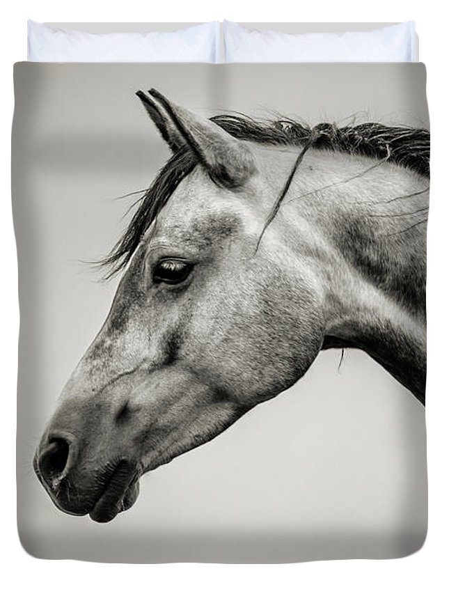 a4ccd09d32a Black And White Horse Head Duvet Cover for Sale by Dimitar Hristov