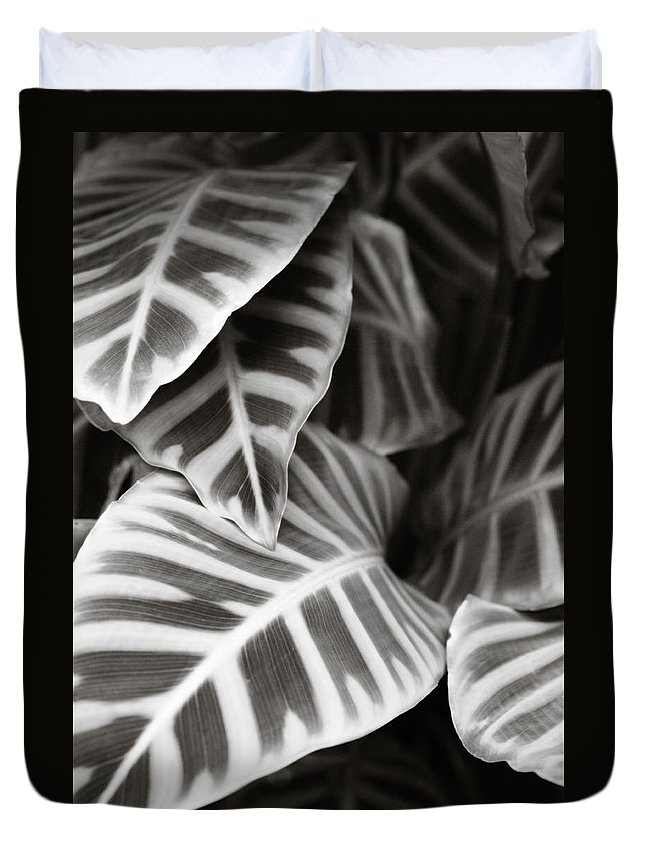 Black Duvet Cover featuring the photograph Black And White Leaves by Marilyn Hunt