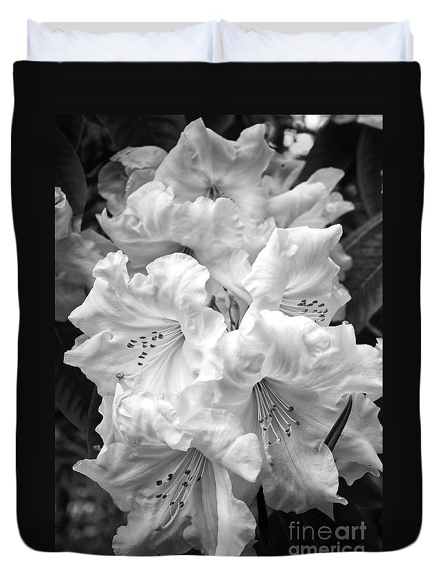 Black And White Nature Duvet Cover featuring the photograph Black And White Rhododendron by Carol Groenen