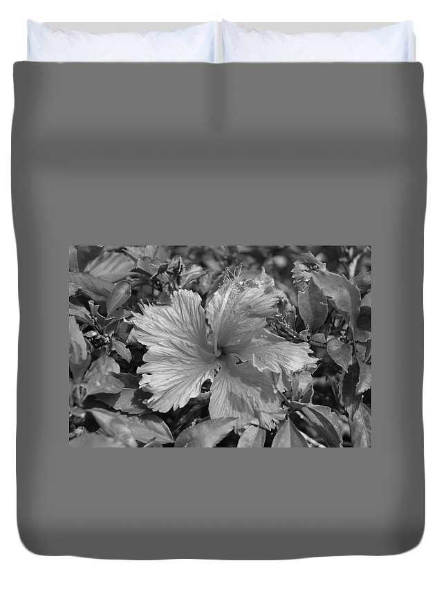 Black And White Duvet Cover featuring the photograph Black And White by Rob Hans