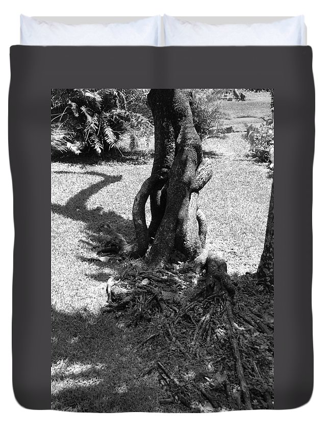 Black And White Duvet Cover featuring the photograph Black And White Roots by Rob Hans