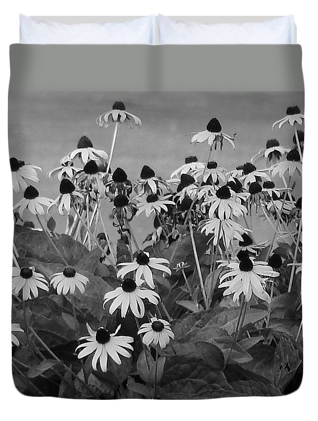 Duvet Cover featuring the photograph Black And White Susans by Luciana Seymour