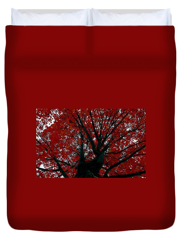 Red Tree Duvet Cover featuring the painting Black Bark Red Tree by David Lee Thompson