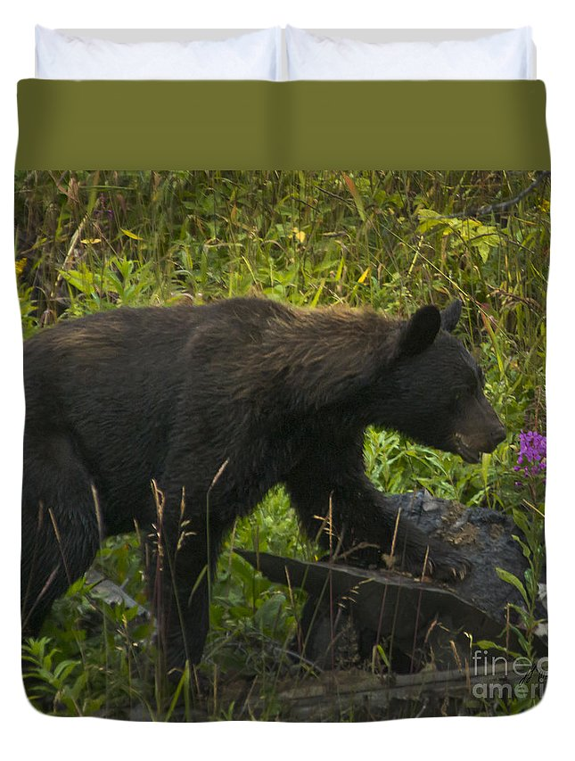 Bear Duvet Cover featuring the photograph Black Bear-signed-#6549 by J L Woody Wooden