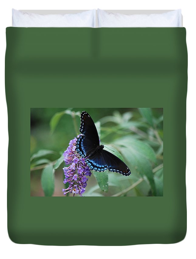 Butterfly Duvet Cover featuring the photograph Black Beauty by Lori Tambakis