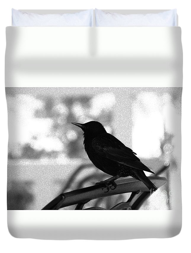 Black Bird Duvet Cover featuring the photograph Black Bird Bw by Linda Shafer