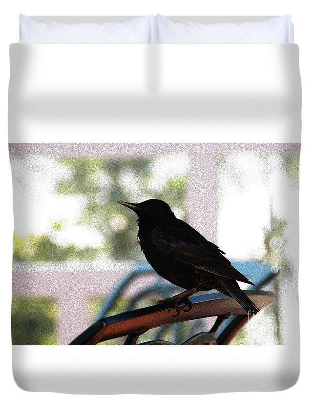 Black Bird Duvet Cover featuring the photograph Black Bird by Linda Shafer