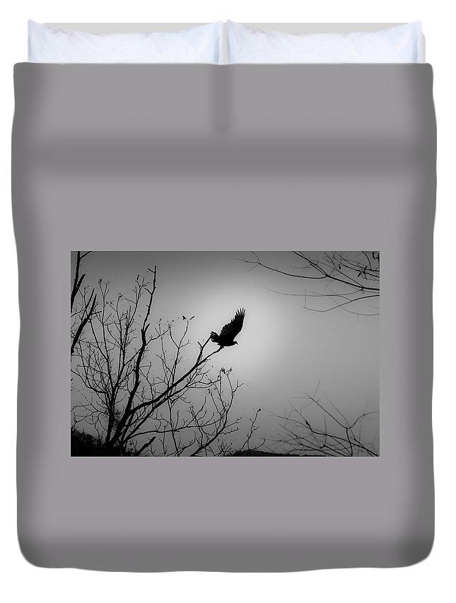 Black Duvet Cover featuring the photograph Black Buzzard 1 by Teresa Mucha