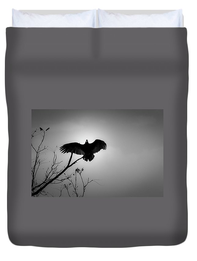 Black Duvet Cover featuring the photograph Black Buzzard 5 by Teresa Mucha