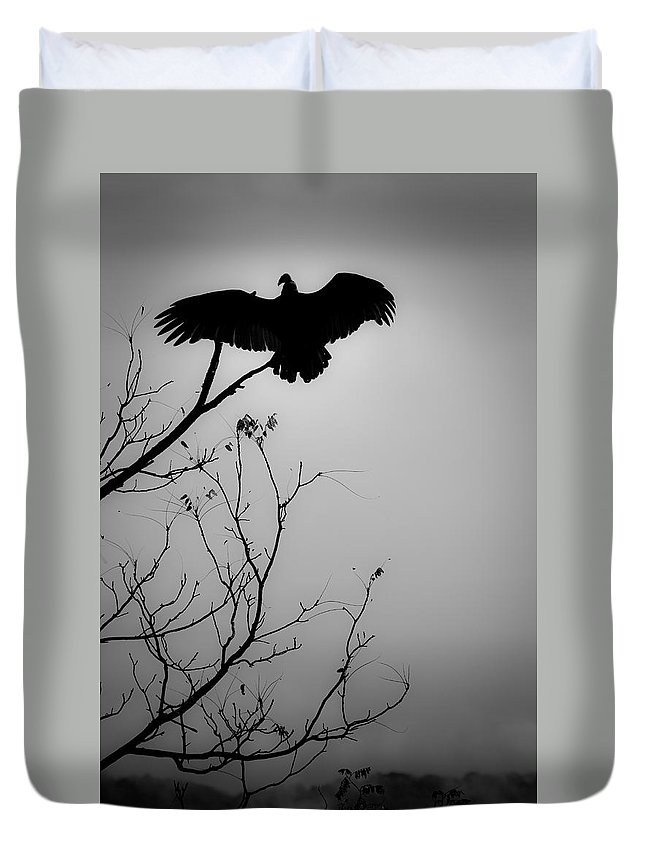 Black Duvet Cover featuring the photograph Black Buzzard 6 by Teresa Mucha
