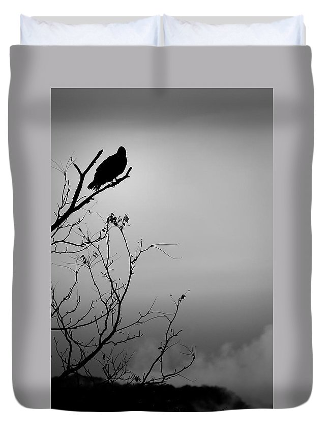 Black Duvet Cover featuring the photograph Black Buzzard 7 by Teresa Mucha
