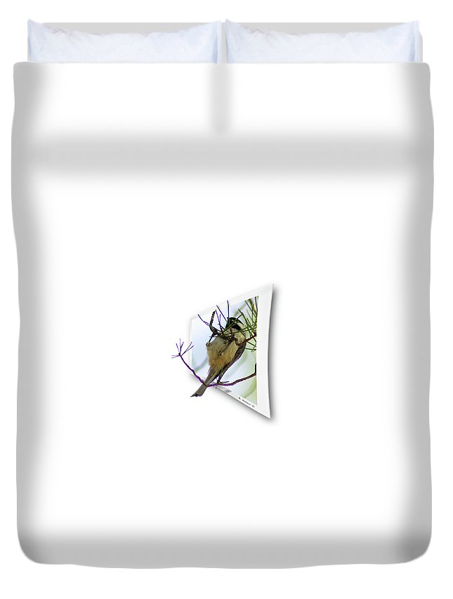 2d Duvet Cover featuring the photograph Black-capped Chick-a-dee by Brian Wallace