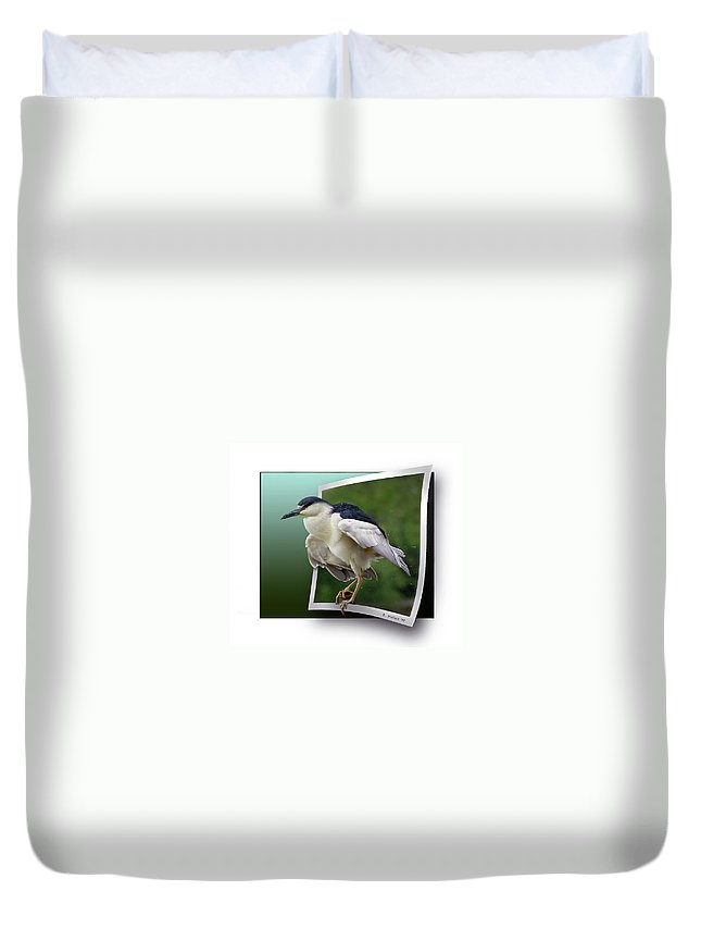 2d Duvet Cover featuring the photograph Black Crowned Night Heron by Brian Wallace