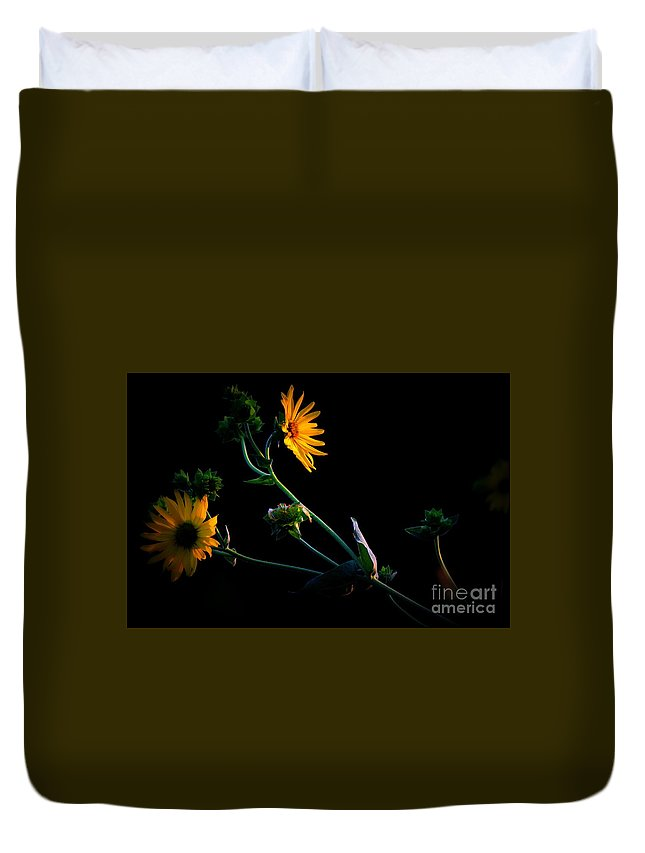 Black Duvet Cover featuring the photograph Black Eyed Susans by Karen King