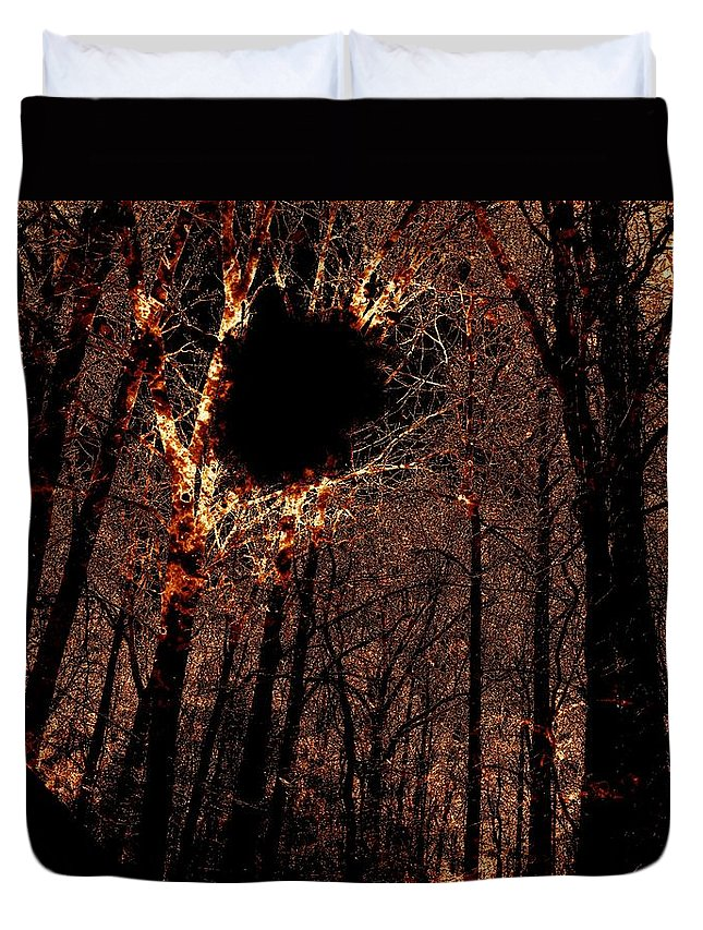 Fire Duvet Cover featuring the photograph Black Hole Sun by Charleen Treasures