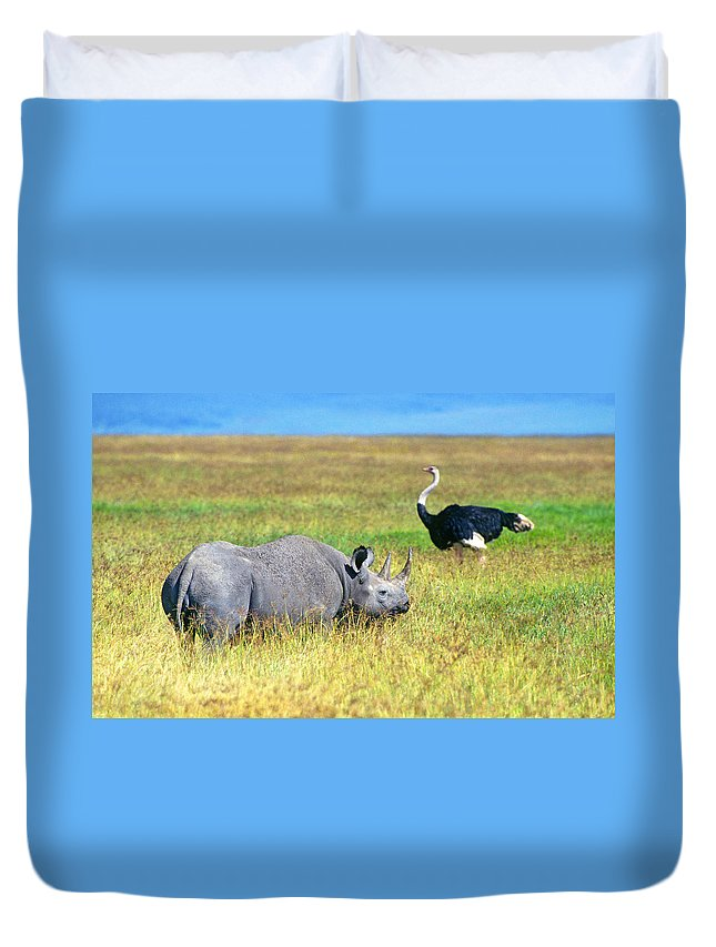 Black Duvet Cover featuring the photograph Black Rhinocerous by Buddy Mays