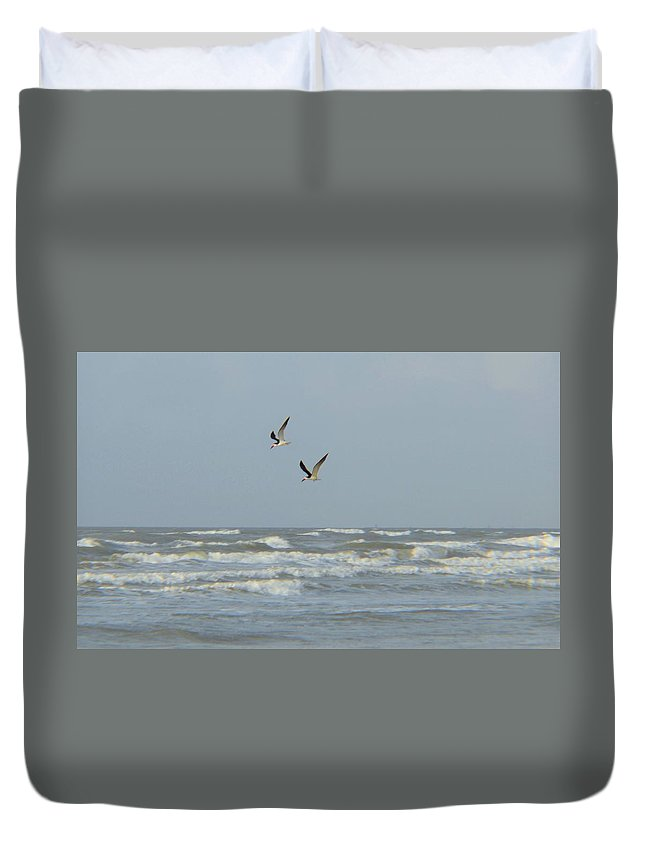 Black Skimmers Duvet Cover featuring the photograph Black Skimmers by Cynthia Bailey