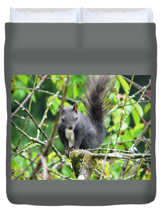 Animal Duvet Cover featuring the photograph Black Squirrel In The Cherry Tree by Valerie Ornstein