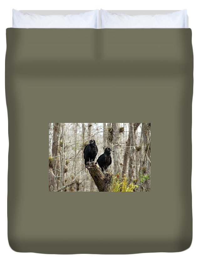 Black Vultures Duvet Cover featuring the photograph Black Vultures by David Lee Thompson