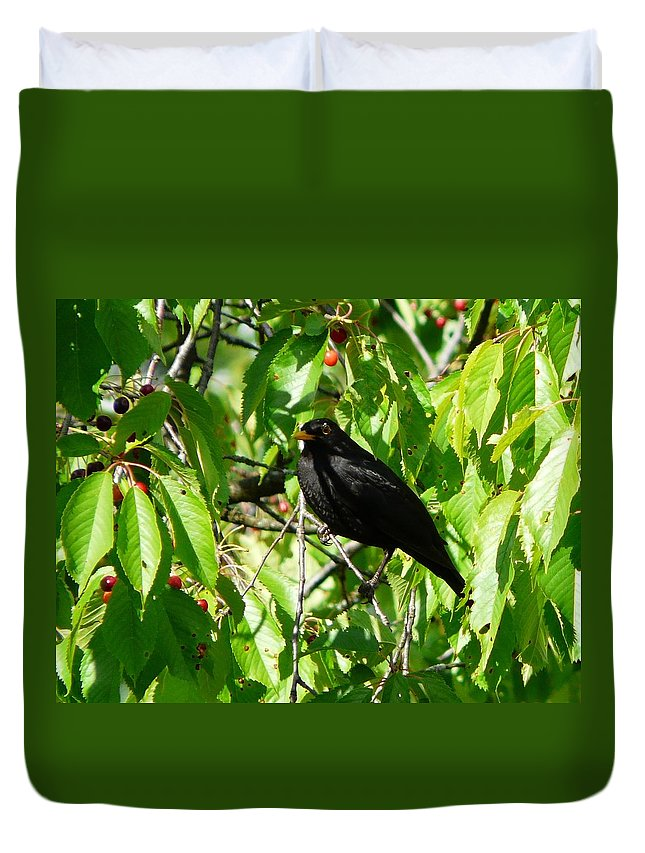 Bird Duvet Cover featuring the photograph Blackbird In The Cherry Tree by Valerie Ornstein