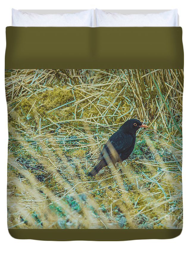 Duvet Cover featuring the photograph Blackbird In The Undergrowth by Marc Daly