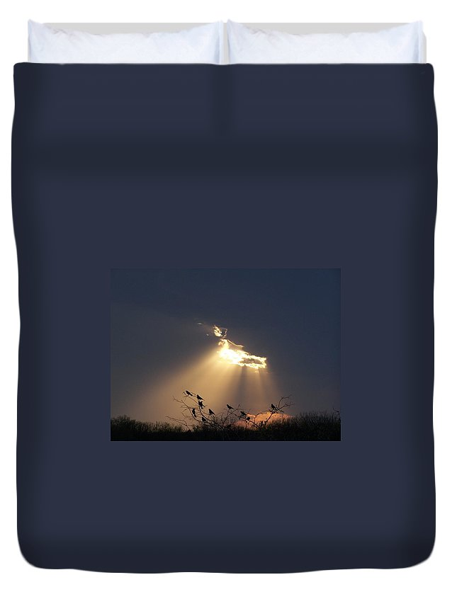 Storm Duvet Cover featuring the photograph Blackbird Sky by Gale Cochran-Smith