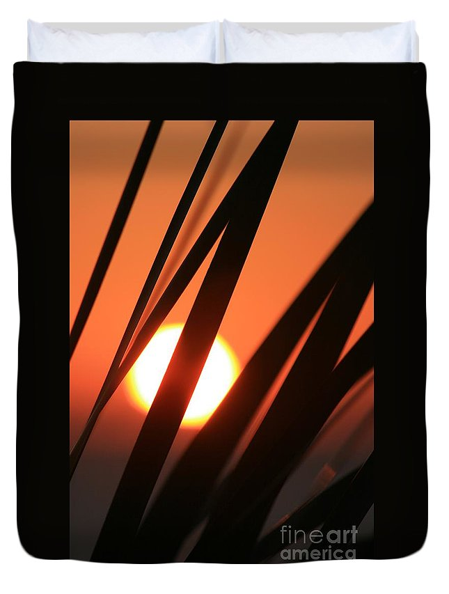 Sun Duvet Cover featuring the photograph Blazing Sunset And Grasses by Nadine Rippelmeyer
