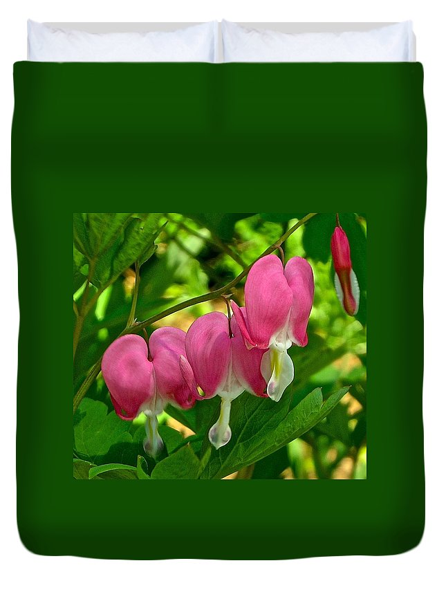 Hearts Duvet Cover featuring the photograph Bleeding Hearts by Danielle Sigmon