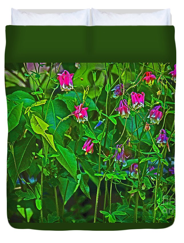 Flowers Duvet Cover featuring the photograph Bleeding Hearts by David Frederick