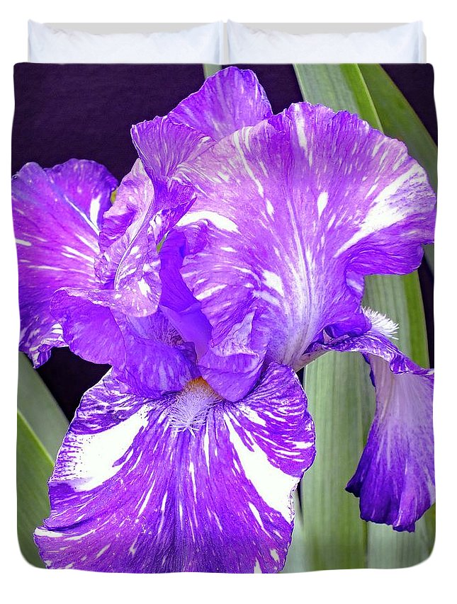 Bearded Iris Duvet Cover featuring the photograph Blended Beauty - Bearded Iris by Cindy Treger