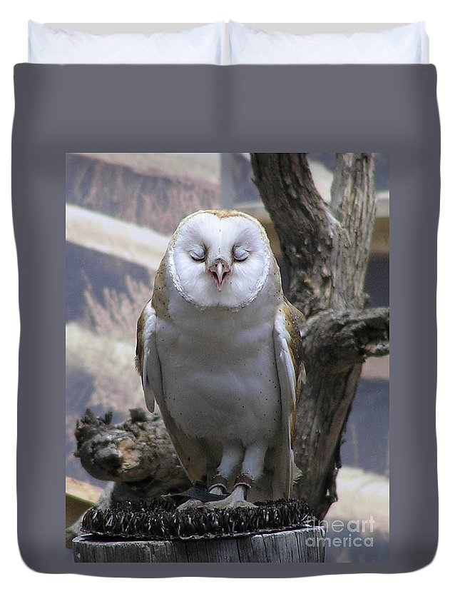 Barn Duvet Cover featuring the photograph Blinking Owl by Louise Magno