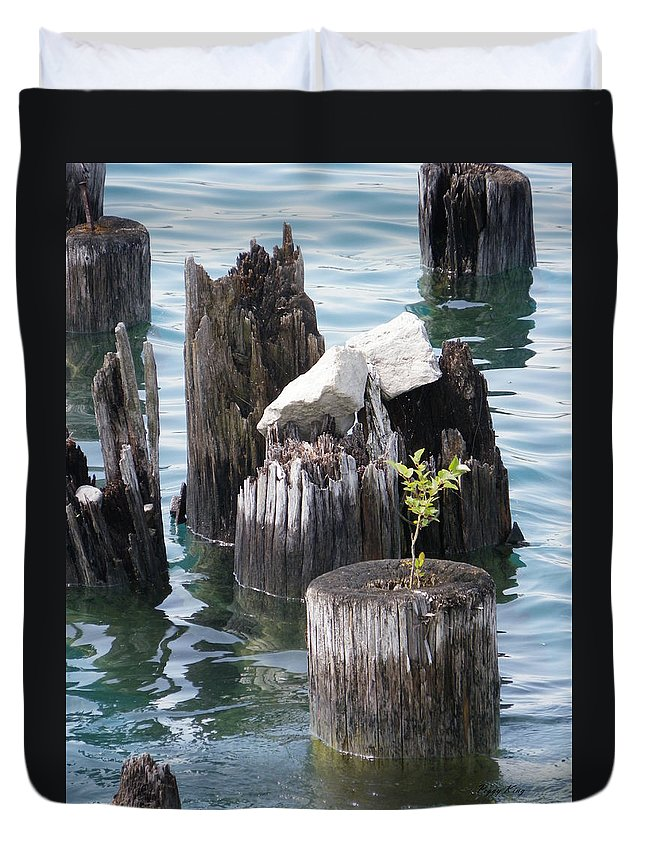 Nature Duvet Cover featuring the photograph Bloom Where You Are Planted by Peggy King