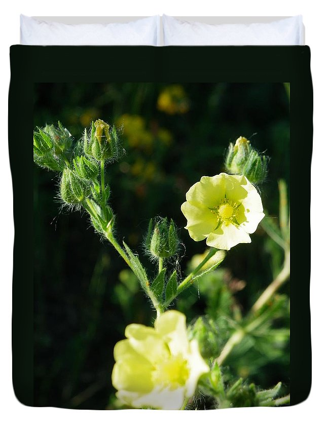 Nature Duvet Cover featuring the photograph Bloomin Happy 1 by Peggy King