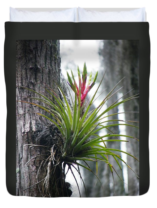Nature Duvet Cover featuring the photograph Blooming Bromeliad by Peggy King
