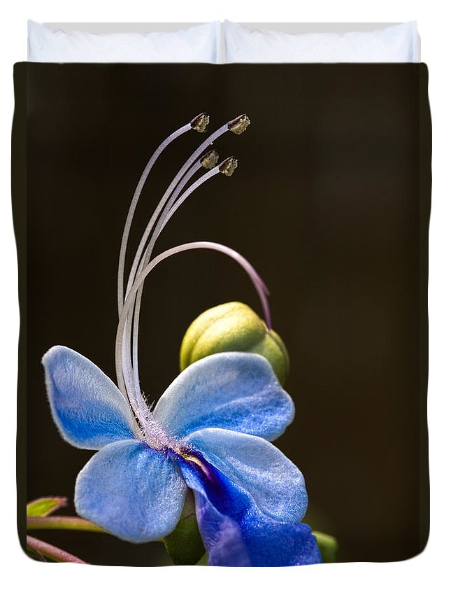 Flower Duvet Cover featuring the photograph Blooming Butterfly by Christopher Holmes