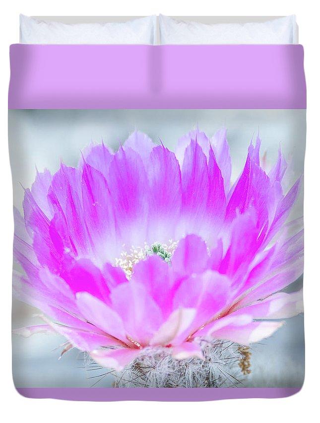 Debra Martz Duvet Cover featuring the photograph Blooming Cactus by Debra Martz