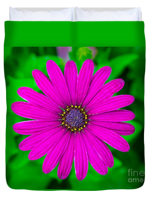 Flower Duvet Cover featuring the photograph Blooming Purple by Robert Edgar