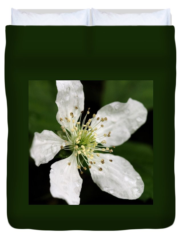 Flower Duvet Cover featuring the photograph Blossom Square by Angela Rath