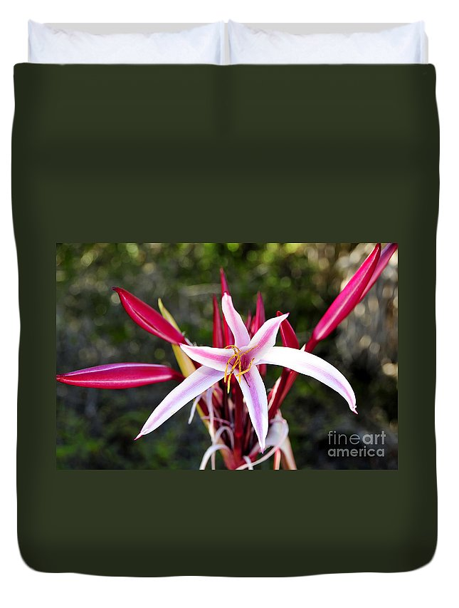 Blossom Duvet Cover featuring the photograph Blossoming Beauty by David Lee Thompson