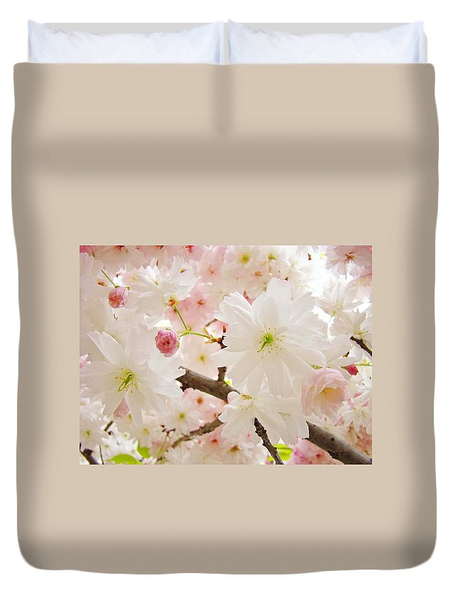Nature Duvet Cover featuring the photograph Blossoms Art Print 53 Sunlit Pink Tree Blossoms Macro Springtime Blue Sky by Baslee Troutman