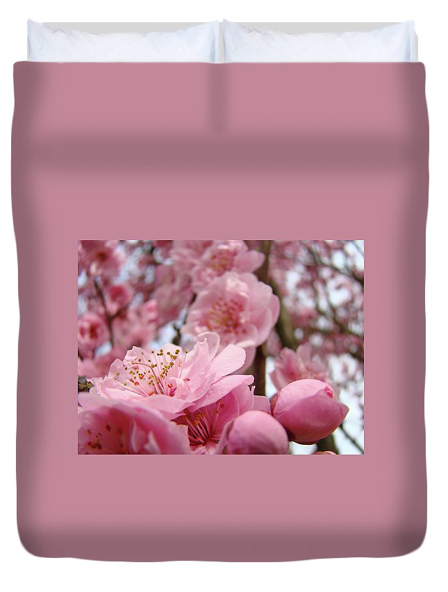 Blossom Duvet Cover featuring the photograph Blossoms Art Print Pink Spring Blossom Baslee Troutman by Baslee Troutman