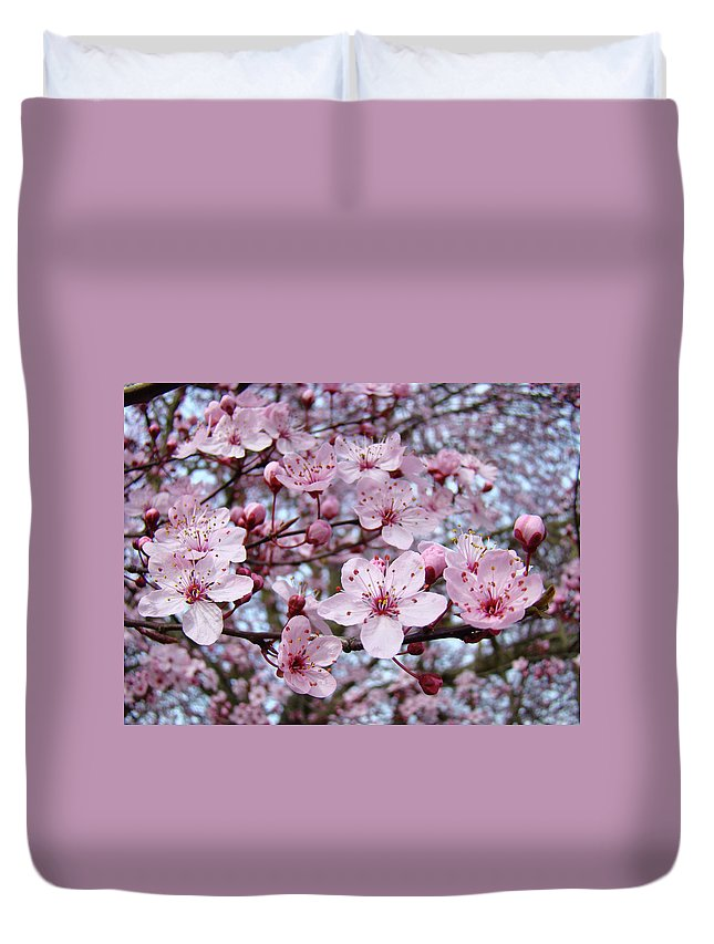 Blossom Duvet Cover featuring the photograph Blossoms Art Prints Nature Pink Tree Blossoms Baslee Troutman by Baslee Troutman